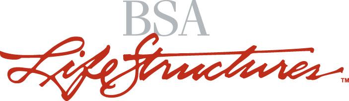 BSA LS logo 2c
